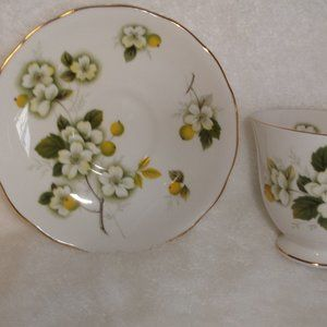 Queen Anne bone china teacup saucer dogwood floral